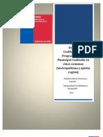 Informe Final de Evaluacion Piloto Municipal