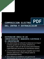 Composicion Electrolitica Del Intra y Extracelular