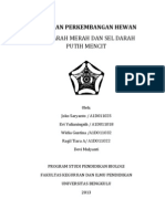 Fiswan Isi