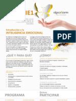 Taller Experimental de Inteligencia Emocional - Nivel 1. Reconoce, acepta y gestiona tus emociones.