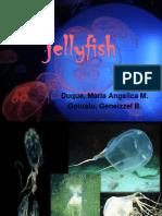 Jellyfish.pptx