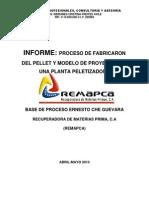 Informe - Pellets