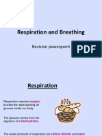 Breathing and Respiration - Revision