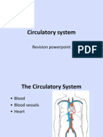 Circulatory System - Revision