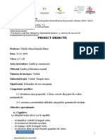 Proiect Didactic Verbul