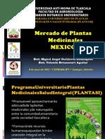 mercadoplantasmedicinalesmexicoipnmayo2012-121230084245-phpapp02