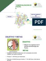 HELICONIAS PACHO resumen.pdf