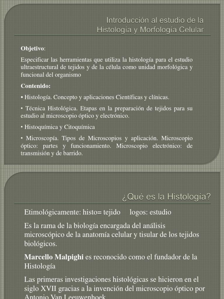 Clase 1-Histología