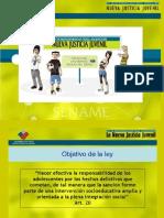 ley 20084