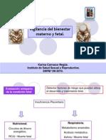 06-evaluacic3b3n-bienestar-fetal.ppt