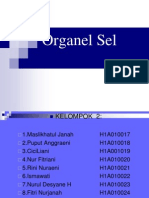 Daftar Pemenang PKM  2012-Copy1 5d5f3e1631