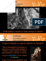Diversidade Cultural e Multiculturalismo