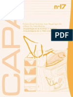 CAPA17.pdf