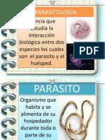 antiparasitarios mecanismo.pptx