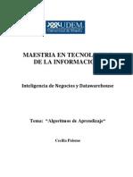 Algoritmos de Aprendizaje-1.pdf