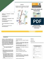 SEP Cedula Prof Duplicado 050613 Tripdupli