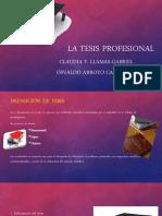 La Tesis Profesional