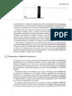 Preparación y Evaluació Proyectos 4Ed - Sappag