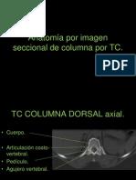 8.4 Anatomía seccional de columna por TC