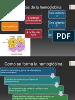 Componentes de La Hemoglobina