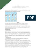 10 Fundamentos Tecnicos de l Voley
