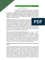 El+Aguacate+Fruto+de+Promisoria+Demanda