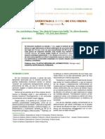 Actividad Antifungica in Vitro de Una Crema Llanten