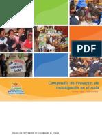 Compendio-2012-huachocolpa