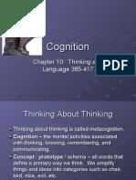 12 Cognition