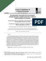 21 Encefalopatías espongiformes transmisiblesv23n2a13