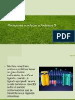 Receptores Acoplados a Proteinas G(2)
