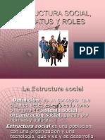 Estructura Social, Estattus y Roles