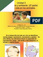 Los Animales y Su Ciclo de Vida