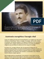 Anatomia Energetica Del Cuerpo