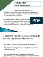 DETERMINANTES  DEL  DESARROLLO DEL SISTEMA NERVIOSO (1)expo gina!!.pptx