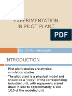Size and Structure of the Pilot Plant