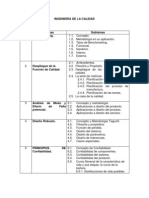 Programa Ingenieria de Calidad Ene Jun 2013
