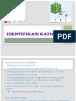 IDENTIFIKASI KATION