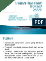 Laporan Praktikum Biokimia Darah