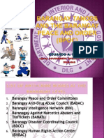 Barangay Tanods and the Barangay Peace and Order