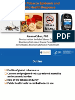 Tobacco Epidemic and PH Responses