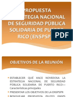 Estrategia Nacional de Seguridad (Presentacioìn)