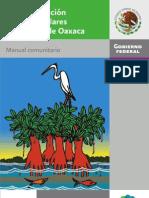 reforestacion_manglares