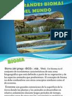 Los Grandes Biomas Del Mundo