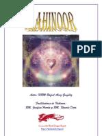 Manual DeI Lahinoor2012