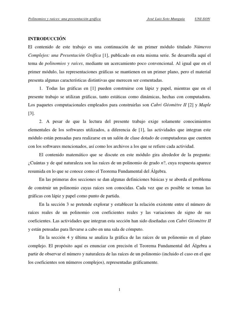 Lujo La Búsqueda De Las RaÃces De Los Polinomios De Hoja De Cà ...