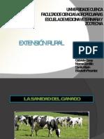 Extensión rural...pdf