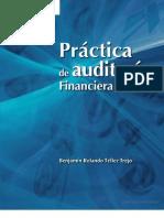 Práctica de Auditoría Financiera y Fiscal
