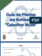 Guia Plantas JCM - Copy