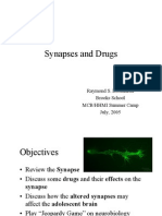 Synapses and Drugs[1]